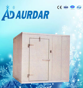 Hot Sale Cold Room Freezer in China pictures & photos