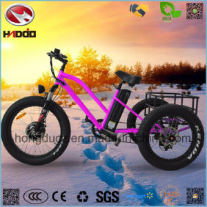 Aluminum Alloy 48V 500W Fat Tire Cargo Electric Tricycle with Pedal pictures & photos