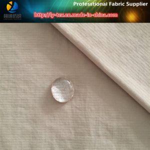 Teflon Nylon Taslon Check Fabric for Garment, Nylon Fabric (LY-R0109) pictures & photos