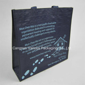 PP Woven Bag, PP Woven Carrier Bag (BG1071) pictures & photos