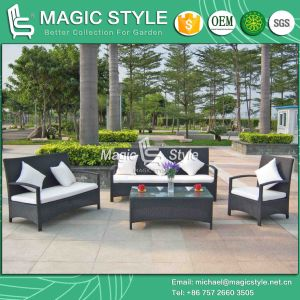Simple Garden Sofa with Cushion Rattan Sofa Set (Magic Style) pictures & photos