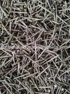Q235, Q195 Blunt Point E. G., HDG, Stainless Steel Nails Common Loose Nails pictures & photos