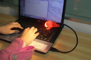 Diver Design Flexible USB Light Promotion Gift 2LED 1W Lamp pictures & photos