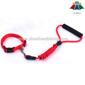 Hot-Sale High-Quality Solid Color 10mm Tetoron Leash with EVA Handle & 15mm Adjustable Collar pictures & photos
