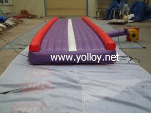 Inflatable Running Track, Air Track for Runner pictures & photos