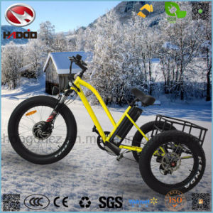 Aluminum Alloy 500W 26inch Cargo Electric Beach Tricycle pictures & photos