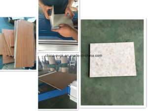 Woodworking Furniture Sliding Panel Table Cutting Saw Machine (F3200) pictures & photos