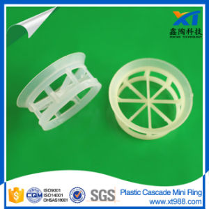 Plastic Cascade Mini Ring Packing pictures & photos