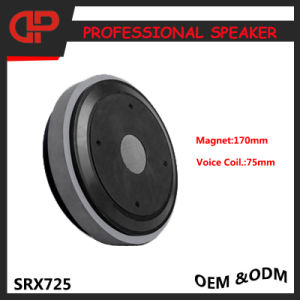Stage PRO Audio Speaker Dual 15 Inch Loudspeakers Srx725 pictures & photos