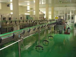 Large Mango Juice Plant Machine Manufacturer in China pictures & photos