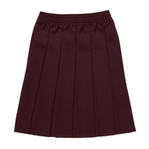 Classic School Uniform Girls Pleat Skirt with Elastic pictures & photos