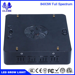 1000W LED Grow Light Full Spectrum for Hydropnic Indoor/Greenhouse Growing Veg and Flower pictures & photos