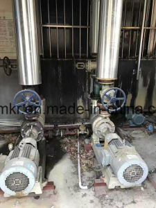 Tin Energy 300 Thousand Kcal Natural Gas Boiler pictures & photos