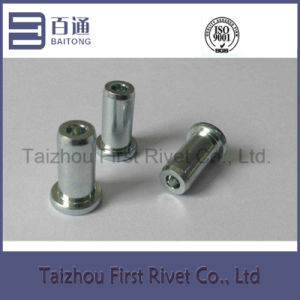 9X21mm White Zinc Plated Flat Head Semi Tubular Steel Rivet pictures & photos