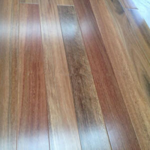 Solid Spotted Gum Timber Flooring pictures & photos
