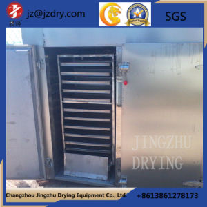 Constant Temperature Energy Saving Medicinal GMP Drying Oven pictures & photos