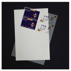 Hot Sale Instant Card Material White-Pet Manufacture pictures & photos