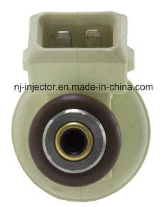 Siemens Fuel Injector (FJ519) for BMW pictures & photos
