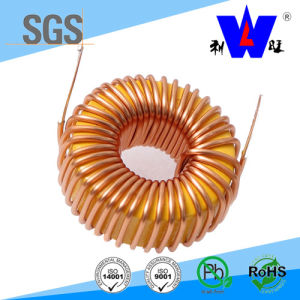 Fixed Toroidal Choke Coil Inductor with RoHS pictures & photos