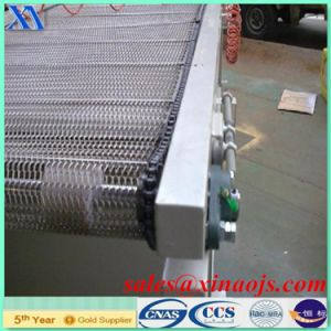 Ss 304 BS Belt / Conveyer Belt pictures & photos
