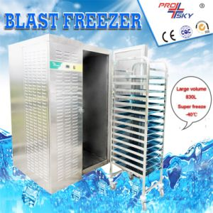 Ultra Low Temperature Tunnel Blast Freezer pictures & photos