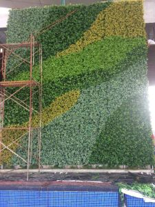 Indoor & Outdoor Artificial Grass Plants Greenery Wall pictures & photos