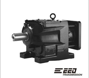 R Series Helical Gear Reducer pictures & photos