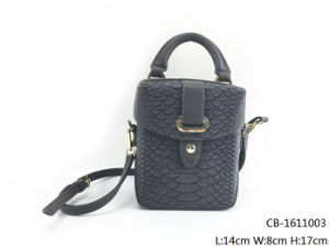 New Fashion Women PU Handbag (CB-1611003) pictures & photos