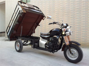 Three Wheel Motorcylce 2015 New 3 Wheel Motorcycle Motorized Cargo Tricycle pictures & photos