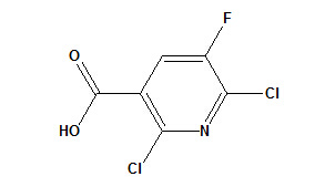 2, 6-Dichloro-5-Fluoronicotinic Acid CAS No. 82671-06-5 pictures & photos