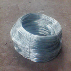Hot Sale Galvanized Iron Wire / Lacing Wire pictures & photos