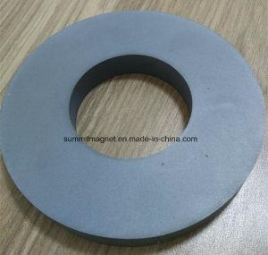 Big Ring Ferrite Magnet for Loudspeaker Application