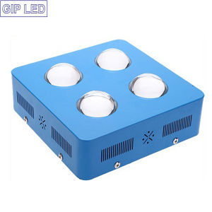 New Present Hydroponics Growing System 504W 600W LED Grow Light pictures & photos