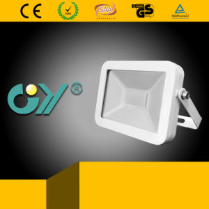High Bright New Super Slim Floodlight with Ce RoHS pictures & photos