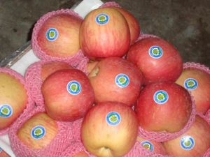 Fresh Chinese Fruit, FUJI Apple pictures & photos