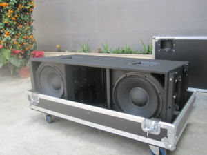 Jbl Vt4889 Dual 15 Inch Big Line Array (VT4889) pictures & photos
