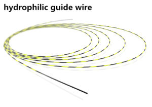Exported Jiuhong Top Hydrophilic Nitinol Guide Wire pictures & photos