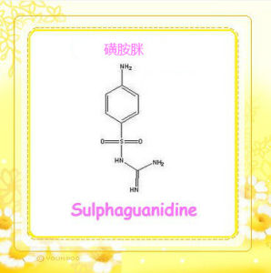 Sulphaguanidine for The Poultry (CAS: 57-67-0) / API / Raw Material