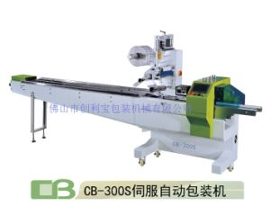 Servo Motor Control Horizontal Packing Machine