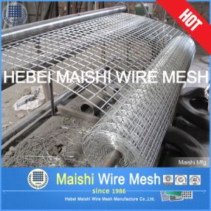 Electro Galvanized After Welding Wire Mesh pictures & photos