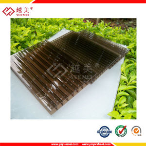 Twin Wall Hollow Polycarbonate Sheets for Greenhouse Roofing &Canopy (YM-PC-011) pictures & photos