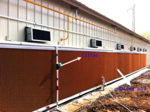 Poultry Cooling Pad in Farm House with Prefab House Construction pictures & photos