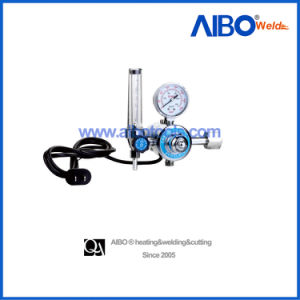 Industrial CO2 Flowmeter Regulator with Heater (2W16-1026) pictures & photos