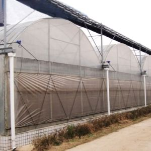 External Sun Shade Net Cover with High Quality pictures & photos