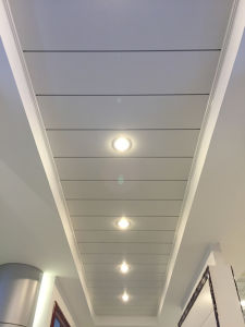 Plain Powder Coated and Perforated Aluminum G-Shaped Ceiling pictures & photos