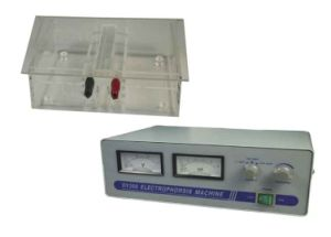 Electrophoresis Machine with Cell pictures & photos