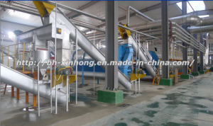 1000t Fishmeal and Fish Oil Plant pictures & photos