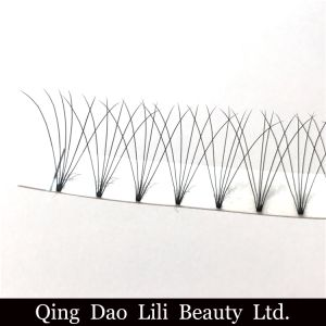 Lili Beauty Pre Fans Volume Lash Custom Eyelash Packaging Eyelash Extension Individual Eyelash Private Label pictures & photos