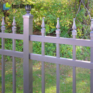 4ftx8FT Iron Fence for Residential and Commercial pictures & photos