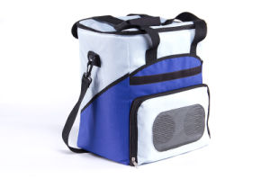 Thermoelectric Soft Cooler Bag 26liter DC12V with Cooling and Warming for Outdoor Application pictures & photos
